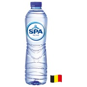 Pack 24 bottles of 50 cl water Spa Reine